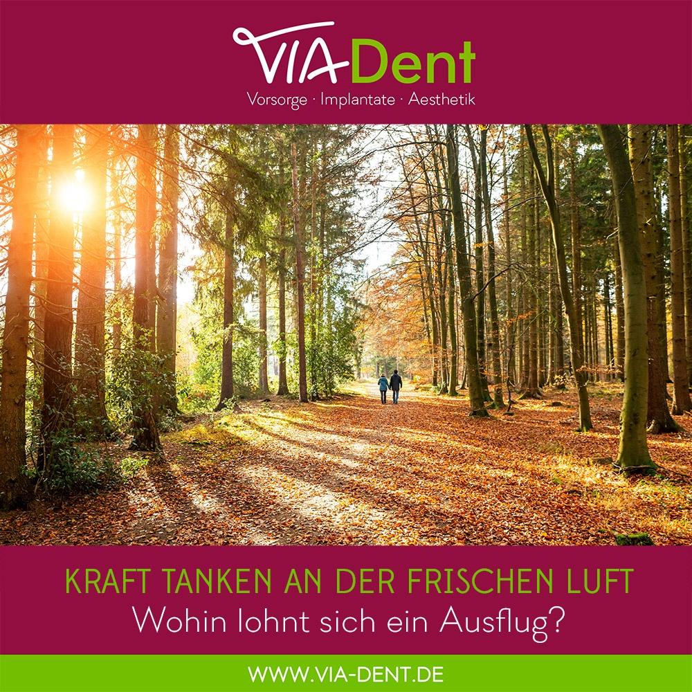 2020-10 Herbstspaziergang - Zahnarztpraxis-ViaDent